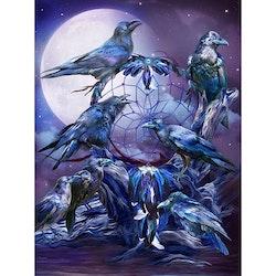 Diamanttavla Raven Dreamcatcher 40x50