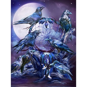 Diamanttavla Raven Dreamcatcher 40x50