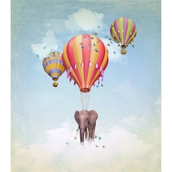 Elephant And Balloon 40x50