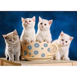 Diamanttavla Kittens Teacup 40x50