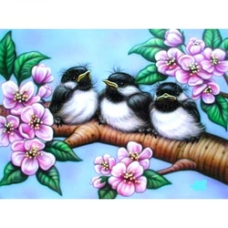 Diamanttavla (R) Birds In Blossom Tree 30x40