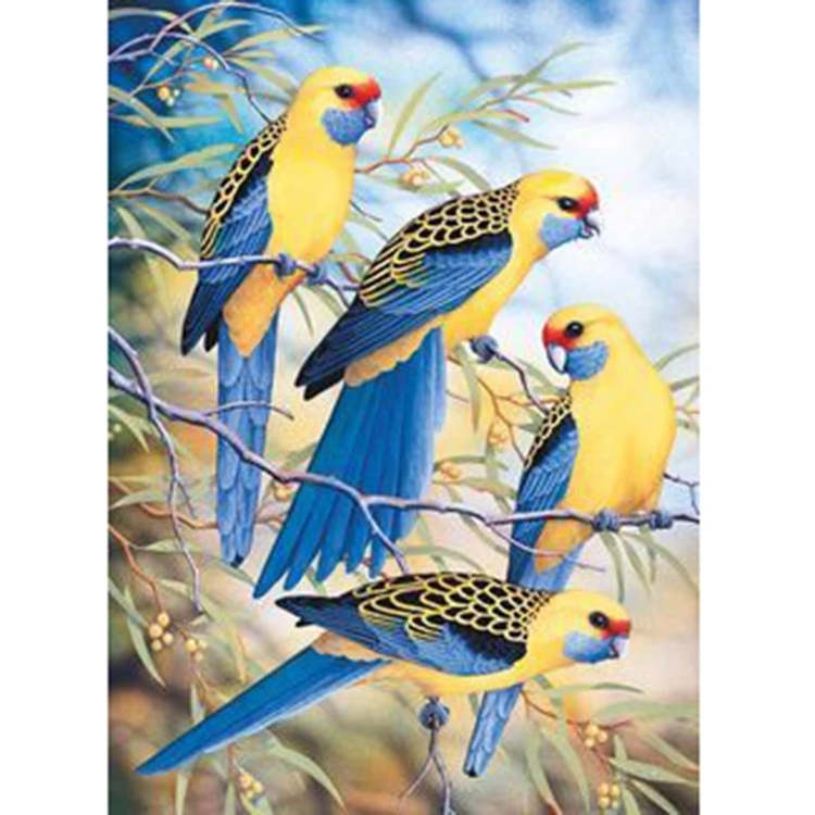 Diamanttavla Exotic Birds 40x50