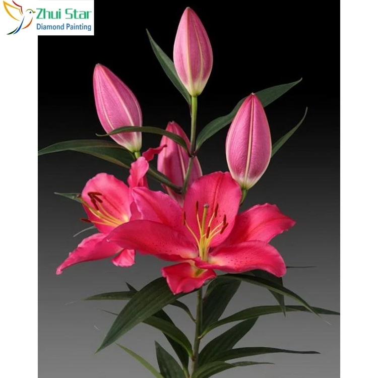 Diamanttavla Pink Lily 30x40