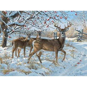 Diamanttavla Winter Deers 40x50