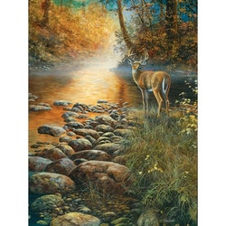 Diamanttavla ( R) Deer By The River 40x50