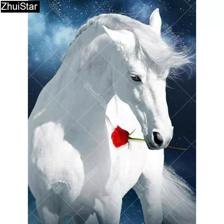 Diamanttavla White Horse Red Rose 40x50