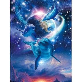 Diamanttavla Dolphin Earth 40x50