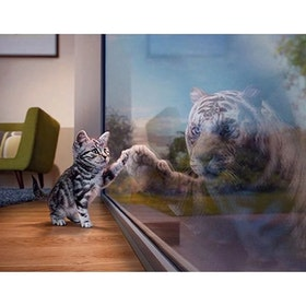 Diamanttavla Cat And Tiger Mirror 40x50