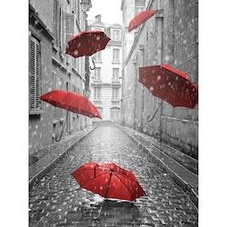 Diamanttavla  Umbrella In The Rain 40x50