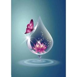 Diamanttavla (R) Drop Lotus 30x40