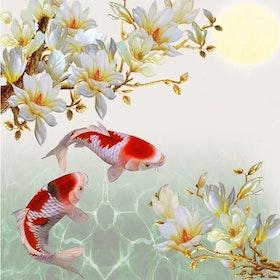 Diamanttavla Koi Fishes 50x50