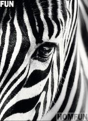 Diamanttavla Zebra 30x40