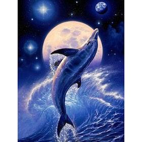 Diamanttavla ( R) Jumping Dolphin Moonlight 30x40