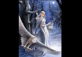 Diamanttavla Woman And Owls 40x50