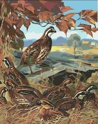 Paint By Numbers Fåglar Bland Höstlöv 40x50