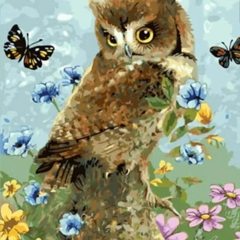 Paint By Numbers Spring Owl 40x50