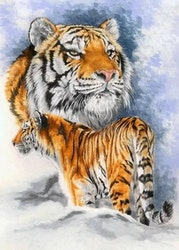 Diamanttavla (R) Tiger I Snö 40x50