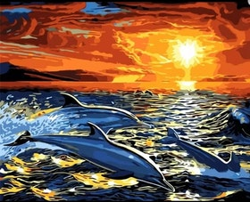 Paint By Numbers Sunset Dolphins