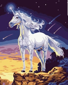 Paint By Numbers Sky Unicorn 40x50