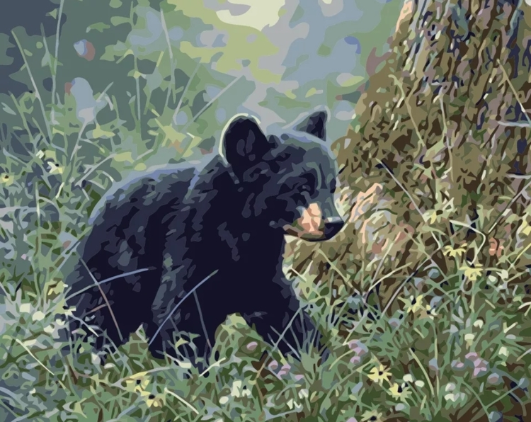 Paint By Numbers Baby Bear 40x50