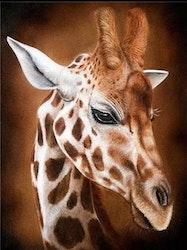 Diamanttavla Söt Giraff 30x40