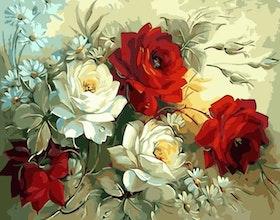 Paint By Numbers Röda Och Vita Rosor 40x50