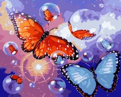 Paint By Numbers Butterflies And Bubbles 40x50