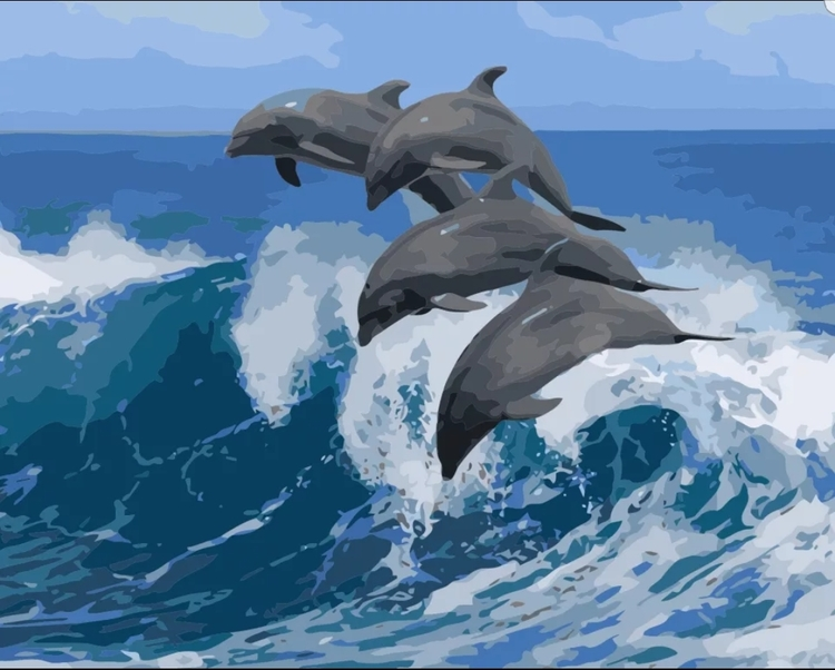 Paint By Numbers Dolphins Wave 40x50