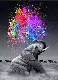 Diamanttavla (R) Elephant Color 40x60