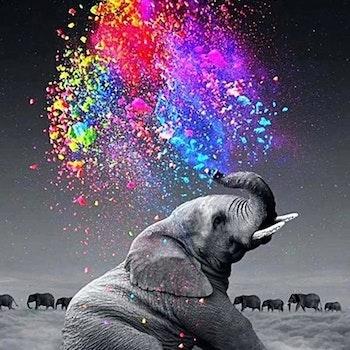 Diamanttavla Elephant Color 40x50