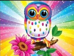 Diamanttavla Coöor Owl With Flower 30x40