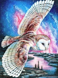 Diamanttavla Owl Sky 40x50