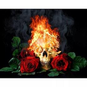 Diamanttavla Fire Skull 40x50