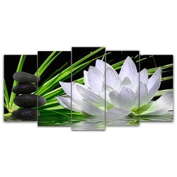 SNART I BUTIK - Diamanttavla 5-delad White Lotus