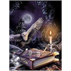 Diamanttavla (R) Magic Night Owl 40x50