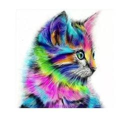 Diamanttavla Colorful Cat 40x40