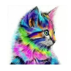 Diamanttavla Colorful Cat 30x30