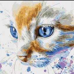 Paint By Numbers Cat Blue Eye 40x50