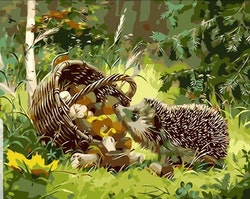 Paint By Numbers Hedgehog And Mushrooms 40x50