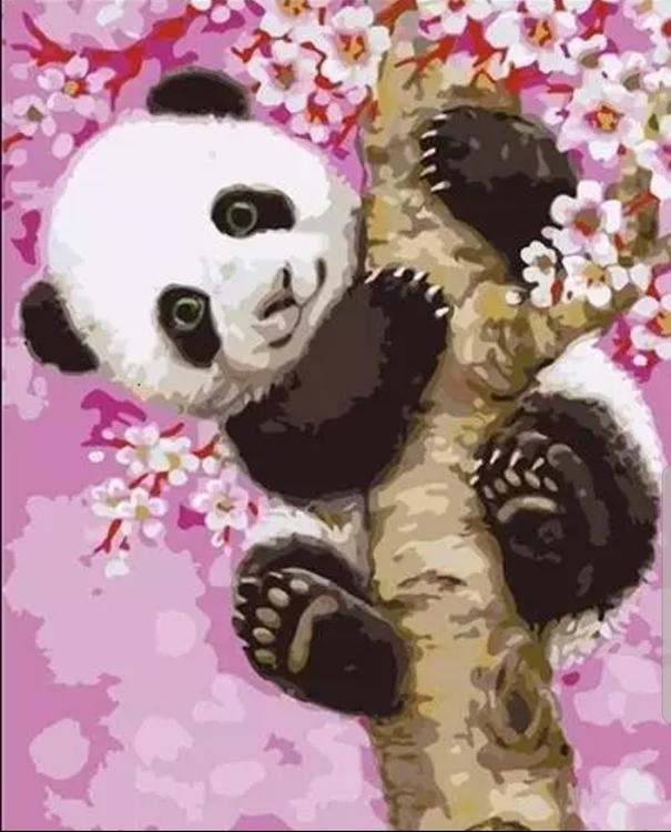 Paint By Numbers Panda Flower Tree 40x50