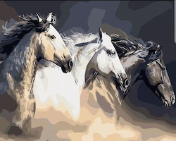 Paint By Numbers Three Horses 40x50