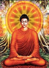 Diamanttavla (R) Meditation Man 40x50