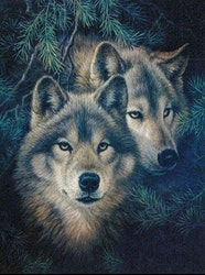 Diamanttavla Forest Wolf 40x50