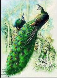 Diamanttavla Påfågelpar I Träd 50x70