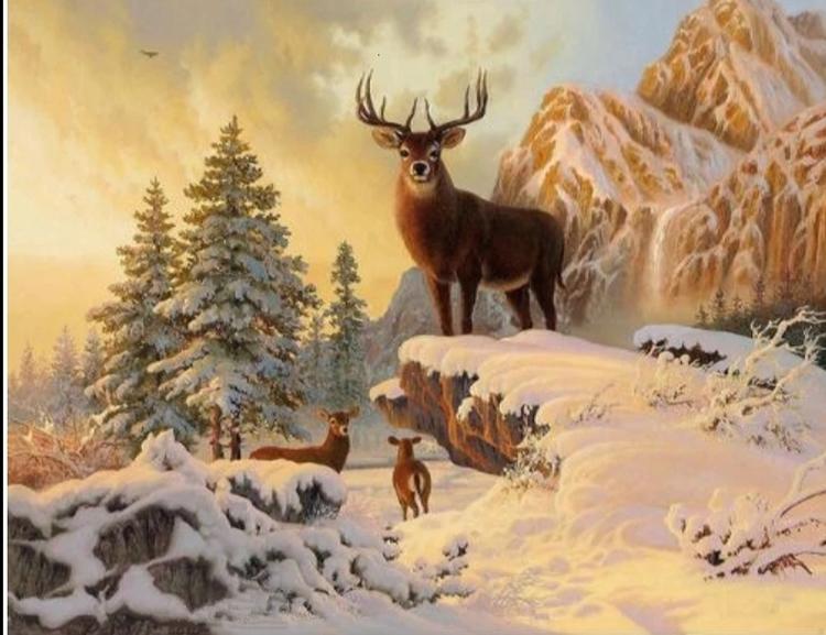 Diamanttavla Snow Mountain Deer 40x50