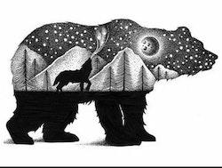 SNART I BUTIK - Diamanttavla Bear Black And White 40x50