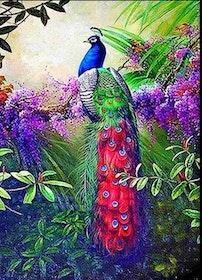 Diamanttavla (R) Magnificent Peacock 50x70
