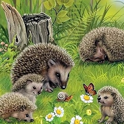 Diamanttavla Hedgehog Family 40x40