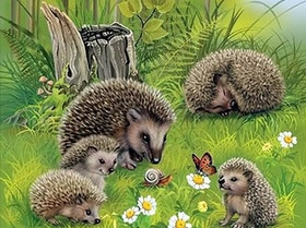 Diamanttavla Hedgehog Family 50x40