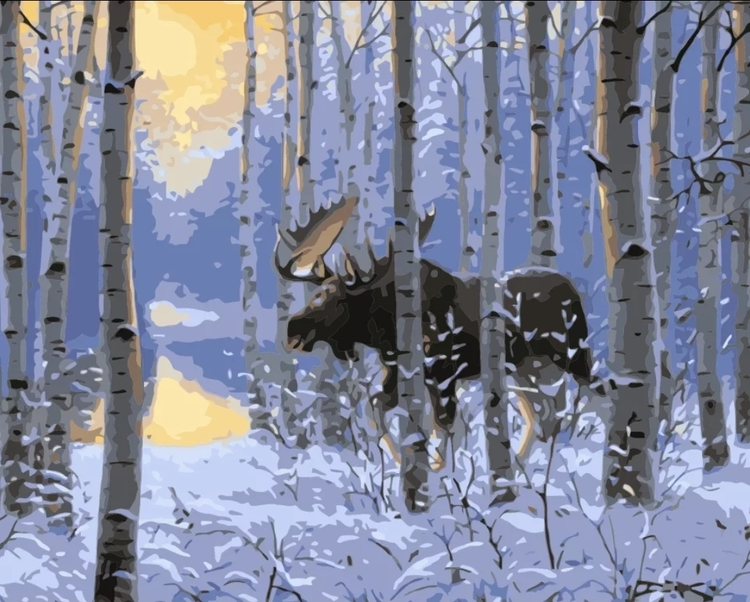 Paint By Numbers Winter Moose 40x50